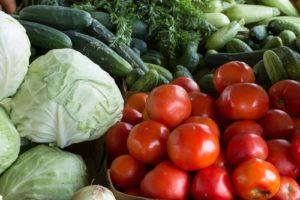 Els aliments frescos en els menús escolars